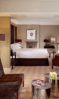 Ashburn Gardens Hotels - The Levin Hotel
